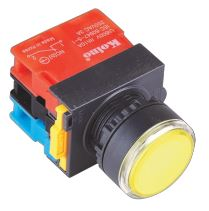 22mm Illuminated Push Button (NS Series) Image